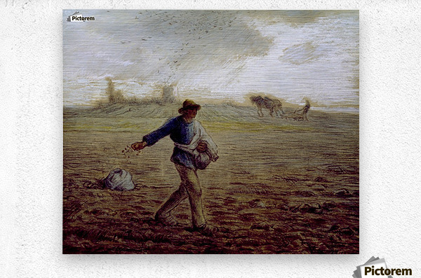 The Sower - Walters  Metal print