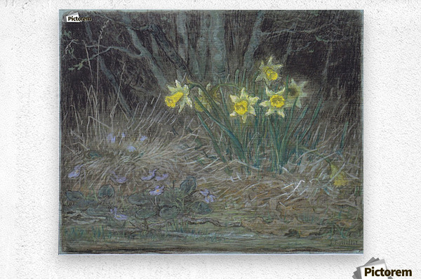 Narcissi and Violets  Metal print