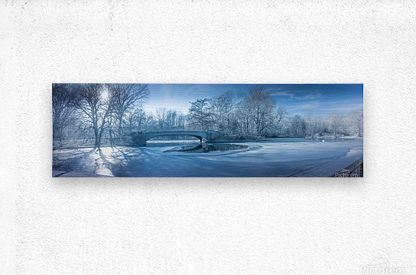 A winter day in the Prospect Park  Metal print
