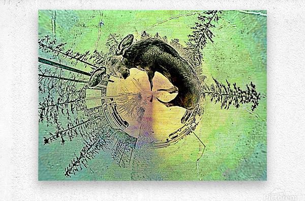 abstract baby moose   Metal print