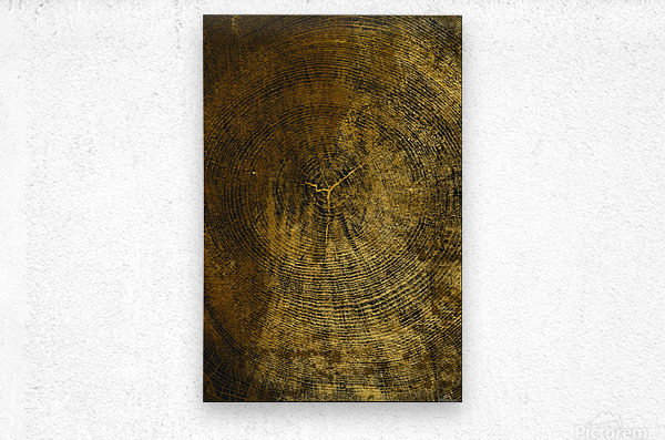 gold texture freekjhkg  Metal print