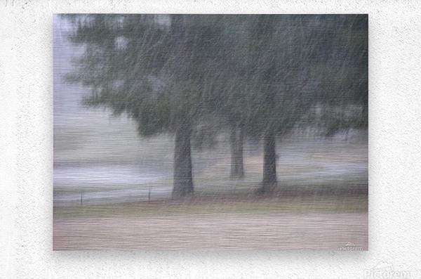 Soft Snow Fall Photograph  Metal print