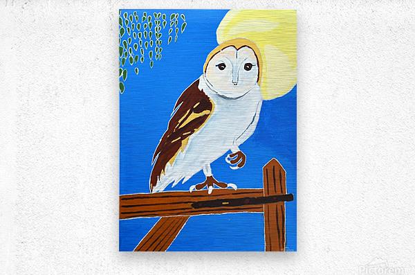 Davere H. Owl  Metal print