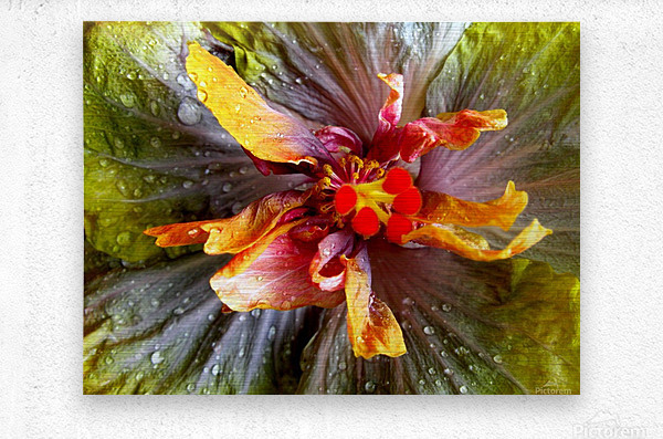 The Multicolored You  Metal print