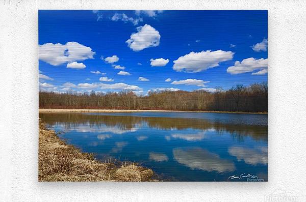 Pond Reflections  Metal print