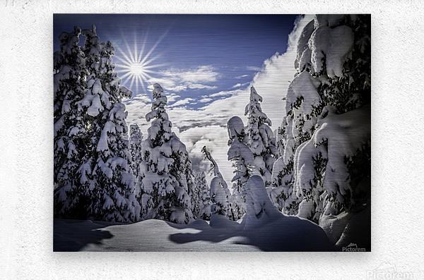 Kootenay Alpine Snow  Metal print
