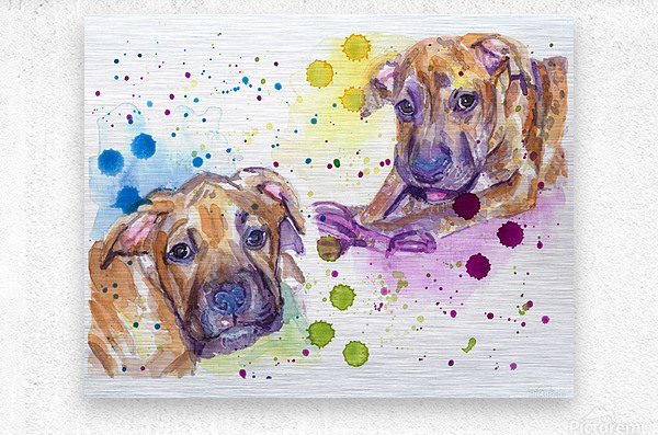 2 Colorful Dogs Brindle - Portrait of Emma and Louis  Metal print