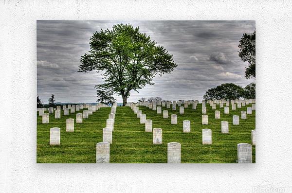 Cemetery Memorial Flags  Metal print