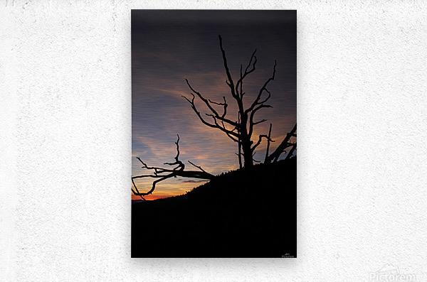 New Mexico Sunrise  Metal print
