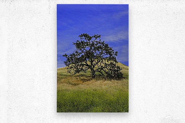 LoneMan  Metal print