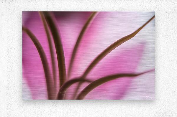 Pinky 3  Metal print