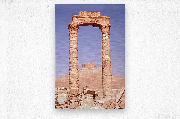 Palmyra  Metal print