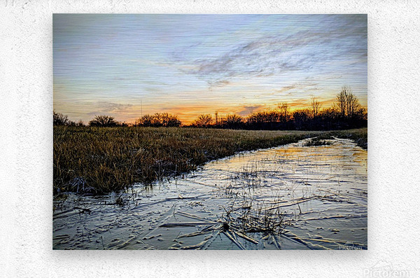 Frosted Ice at Dawn  Metal print