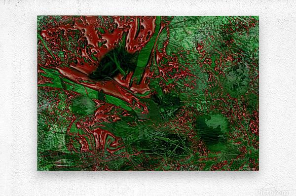 C33DC36B 6E99 4903 AC4E 5B312F59DB22  Metal print