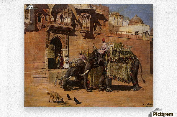 Elephants at the Palace of Jodhpore  Metal print