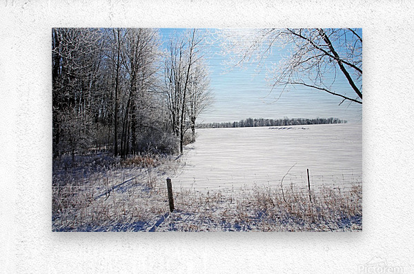 Frosty Winter Countryside I  Metal print