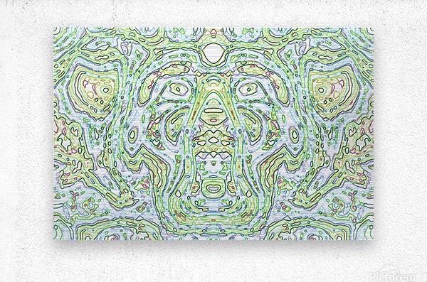 CapPY X  Metal print