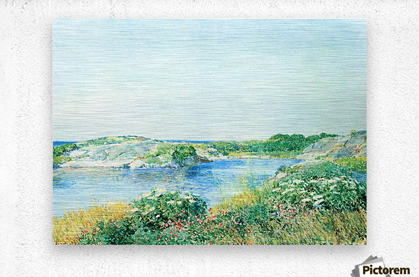 The small pond by Hassam  Metal print