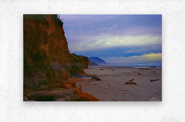 At the Coast  Metal print