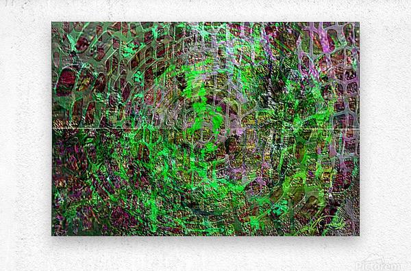 2BAAD719 CD59 427A 80EA 27BE49DB5D6D  Metal print