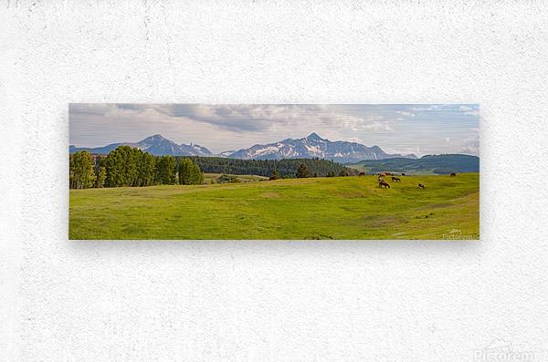 Wilson Peak with Horses  Metal print
