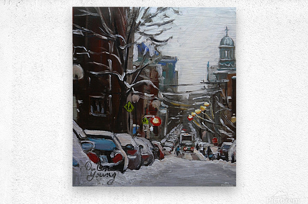 Le Plateau Mont Royal  Metal print