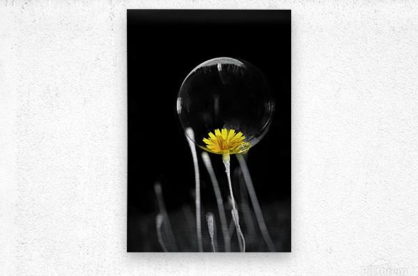 Passe present  Metal print