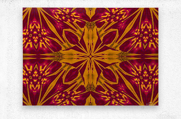Wildflower of Gold and Red  Metal print