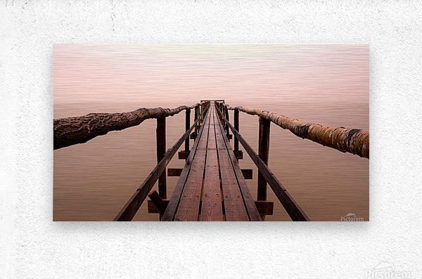Enter The Lake  Metal print