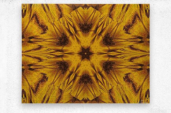 Spiritual Sunshine  42  Metal print