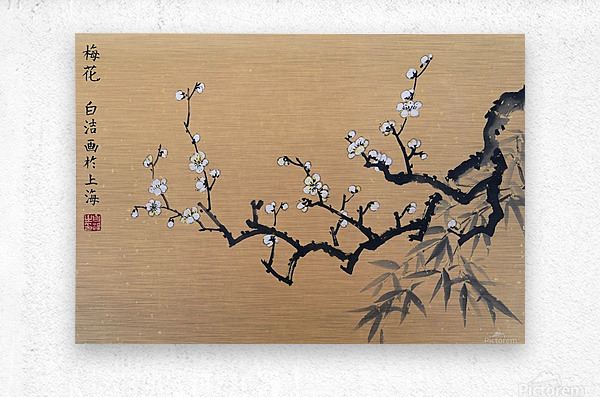 White Plum Blossom With Bamboo  Metal print