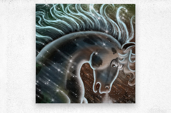 horse nature stallion equestrian  Metal print