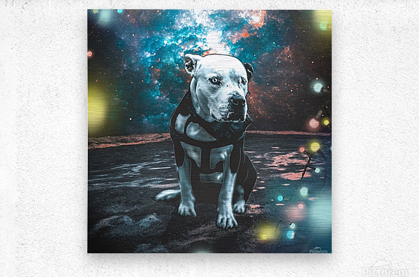 cosmos background space dog  Metal print