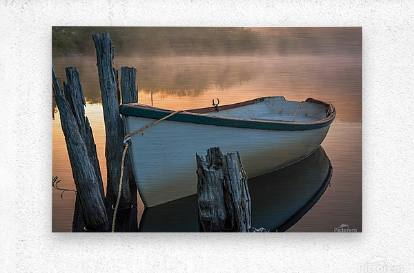 Caught in the Moment  Metal print