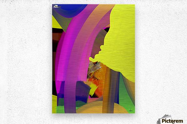 0168  Metal print