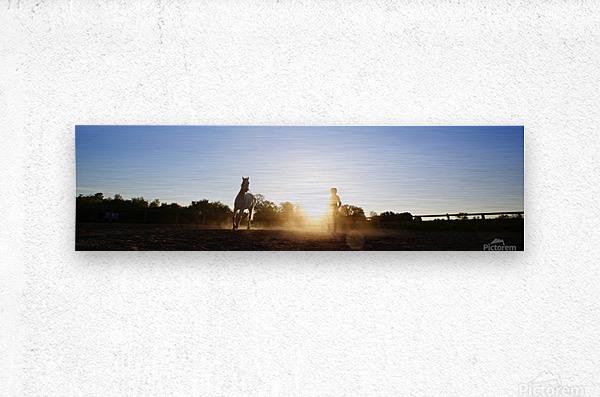 Lunging at Sunset  Metal print