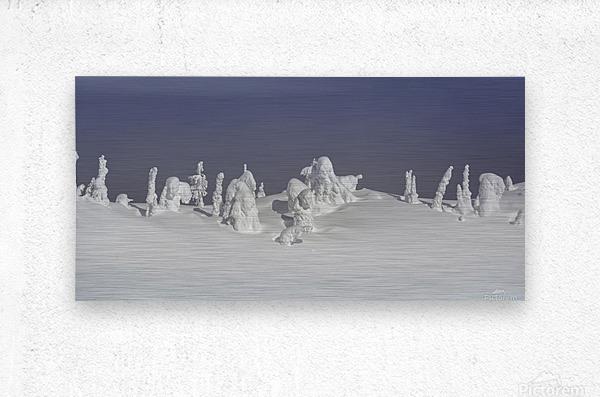 Frozen snow ghosts 1 of 1  Metal print