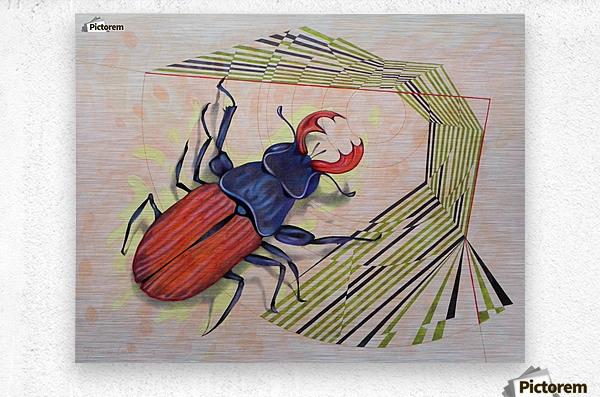 stag beetle  Metal print