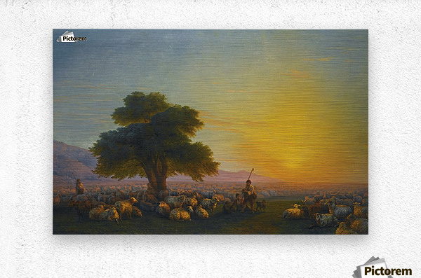 Sheeps in the sun  Metal print