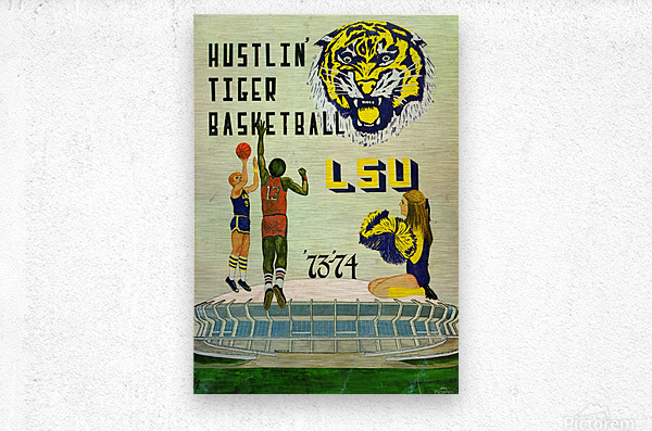 1973 Hustlin Tiger Basketball  Metal print