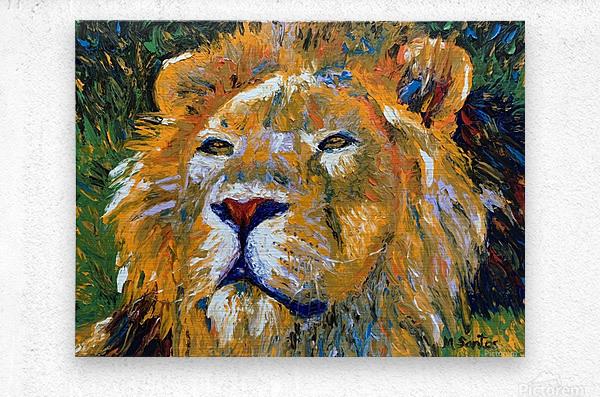Lion Closeup  Metal print