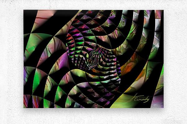 CC81B5DA BEA3 4A05 B203 BD331E8CB7CA  Metal print