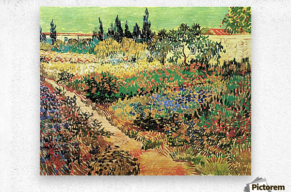 Flowering Garden with Path by Van Gogh  Metal print