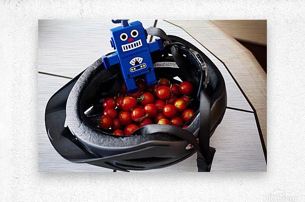 Robot Bike Helmet Tomatoes  Metal print