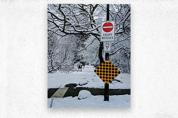 Snowy day  Metal print