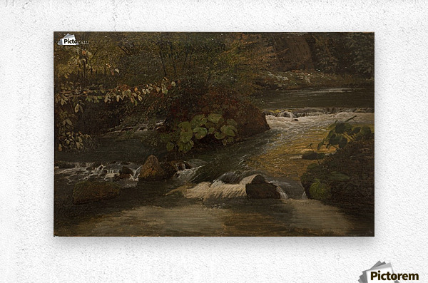 Landscape on a river  Metal print