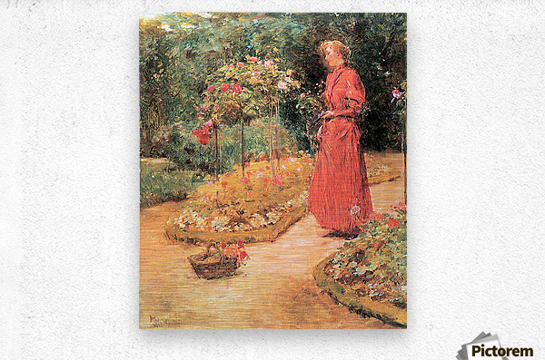 Woman cuts roses in a garden by Hassam  Metal print