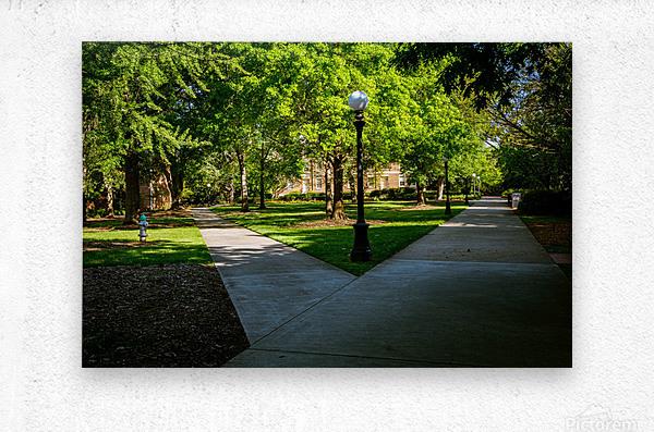 University of Georgia   Athens GA 06331  Metal print