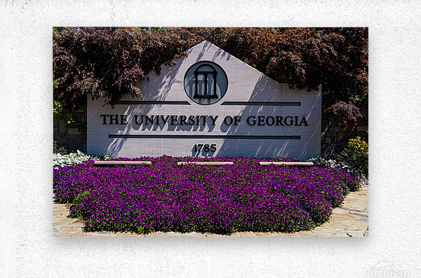 University of Georgia   Athens GA 07028  Metal print