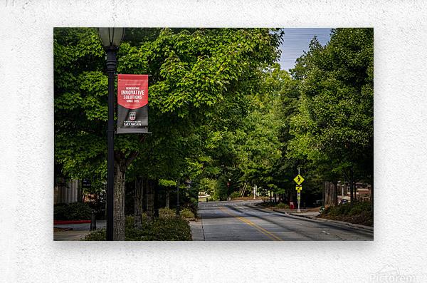 University of Georgia   Athens GA 9434  Metal print